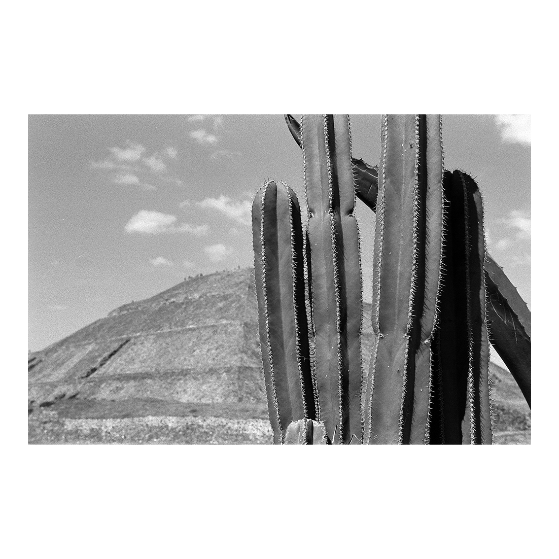 Teotihuacan, Mexique, 2008